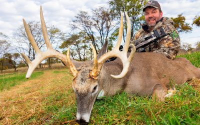 Mid-Season Update and Cancellation Hunts