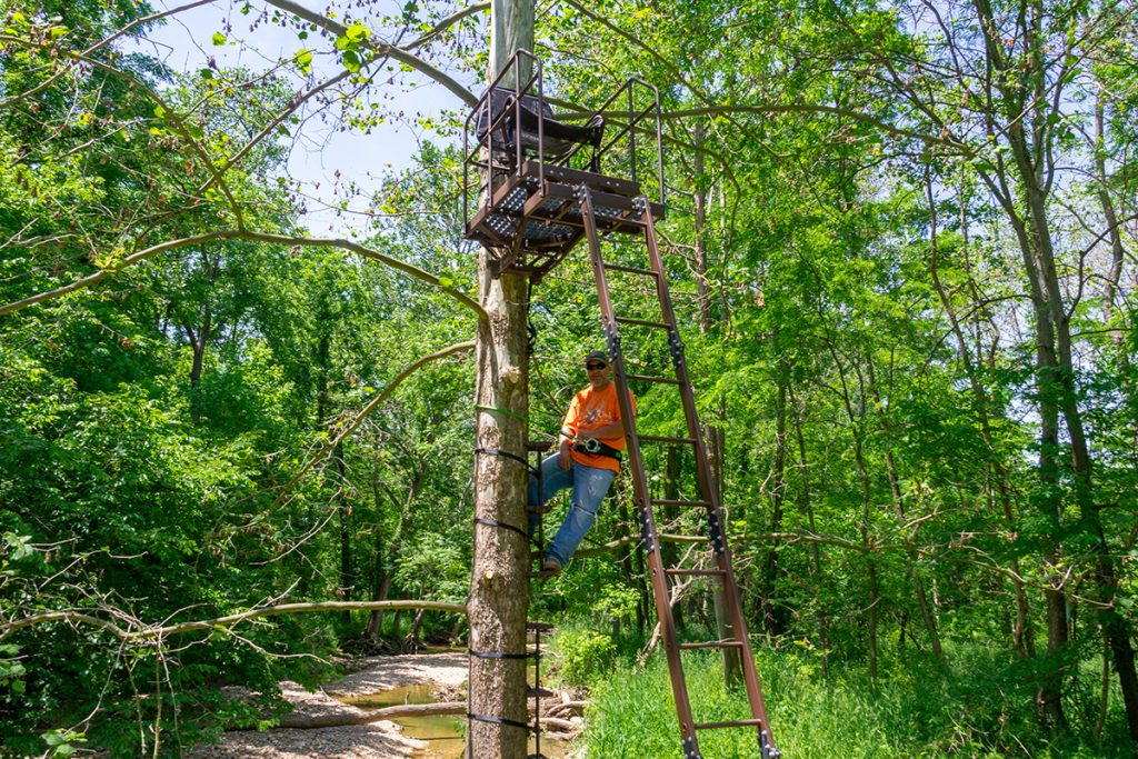 Whitetail Hunting Treestand Test